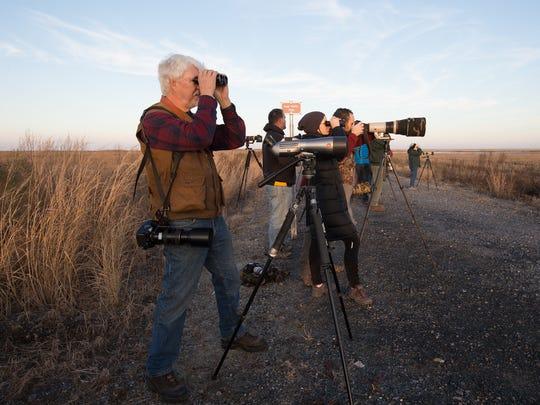 Jim White of Hockessin looks for birds at Prime Hook National Wildlife Refuge.