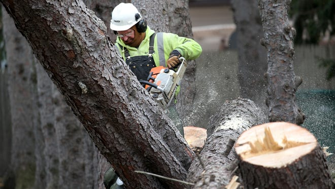 Paul Jones of Davey Tree works to remove a large pine tree that fell on a home in Irondequoit during the wind storm in March.