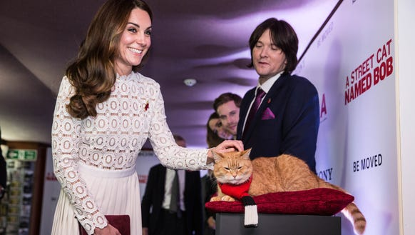 Duchess Kate of Cambridge greets Bob the cat as she