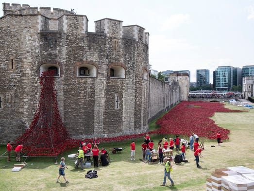 Volunteers assemble an installation entitled 'Blood Swept Lands and Seas of Red' by artist Paul Cummins, made up of 888,246 ceramic poppies in the moat of the Tower of London to commemorate the First World War on July 28, 2014 in London, England. Each ceramic poppy represents an allied victim of the First World War and the display is due to be completed by Armistice Day on November 11, 2014. After Armistice Day each poppy from the installation will be available to buy for 25 GBP.