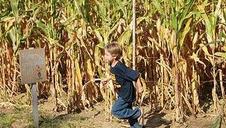 Harvest Days will take place Saturday's beginning Sept. 30. They are hosted by Prospect Hill Garden Center, 19305 W National Ave. in New Berlin.