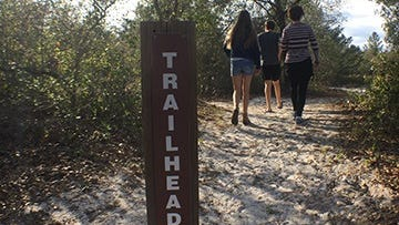 Get out and explore St. Lucie County's preserves with guided hikes. For details and to sign up visit: www.slchikes.org