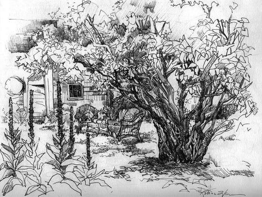 """""""Secret Garden, Under the Lilacs,"""" ink drawing by Rebecca Venn, part of """"The Garden: An Artist's Interpretation"""" at the Miller Art Museum."""