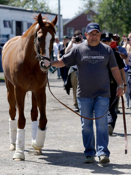 ADVANCE FOR WEEKEND EDITIONS, JUNE 1-2 - FILE - In this May 20, 2014 file photo, assistant trainer Alan Sherman leads Triple Crown hopeful California Chrome to his stall at Belmont Park in Elmont, N.Y. California Chrome's bid to become racing's first Triple Crown winner in 36 years isn't scaring away the competition. Horses are lining up to challenge the Kentucky Derby and Preakness winner in the Belmont Stakes next weekend.  (AP Photo/Seth Wenig, File)