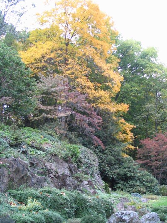 Leonard J Buck Garden Is At Peak Of Fall Color