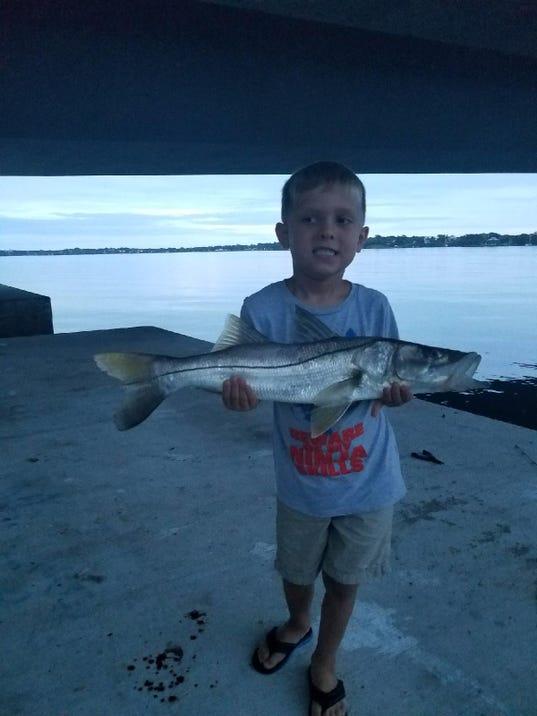 Treasure coast fishing report summer fishing has begun for Jensen beach fishing report