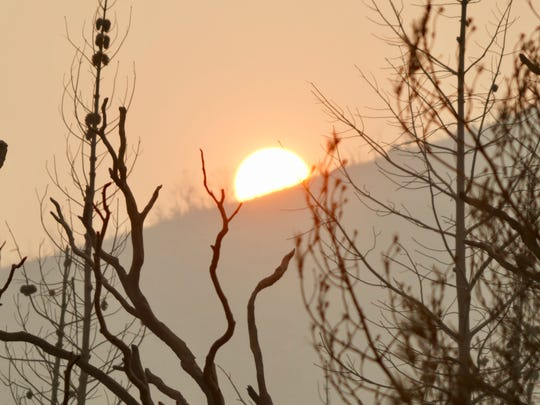 The setting sun highlights burned trees destroyed by the Carr Fire on July 31, 2018, near Redding, Calif.