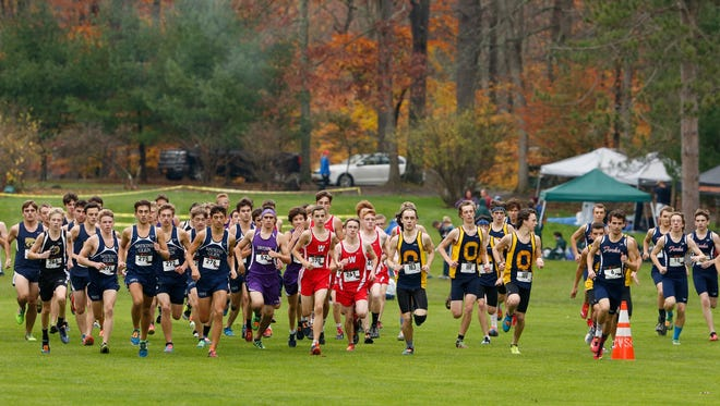 The Section 4  Class C cross country championship at Chenango Valley State Park on Nov. 2.
