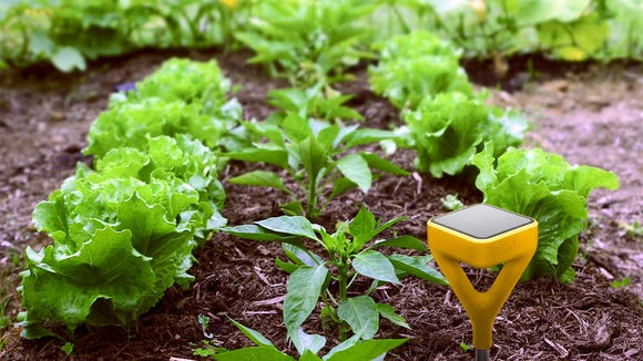 Monitor the growing conditions in your garden with Edyn.