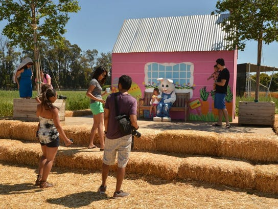 Underwood Family Farms in Moorpark will present its Springtime Easter Festival from March 24 through April 8.