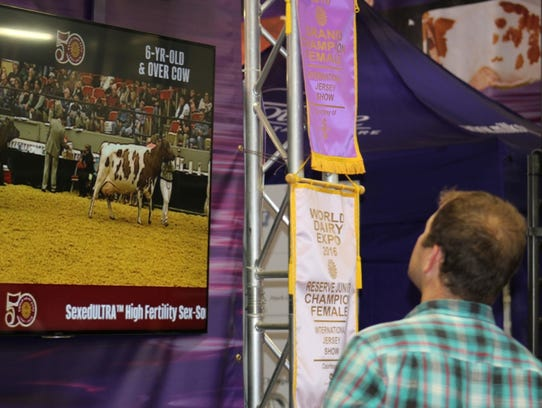 Exhibitors catch the action from the Coliseum on monitors