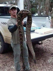 Claims that this Eastern diamondback rattlesnake was