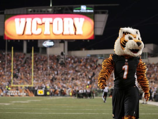 The Bengals' mascot prowls the sideline at a recent