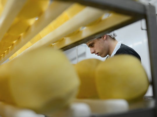 Cody Fernlund rounds off the edges of a cart full of cheese at Scray Cheese in Rockland.