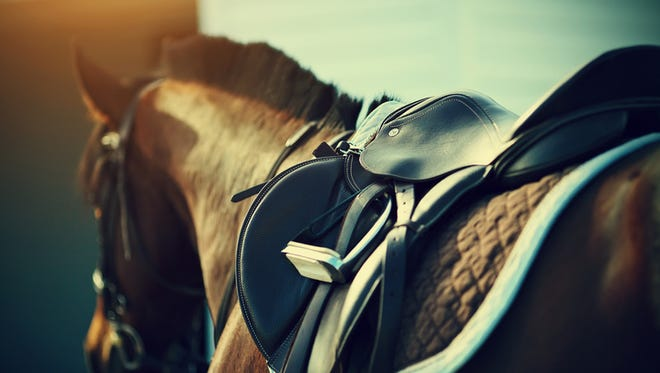 Saddle with stirrups on a back of a sport horse.