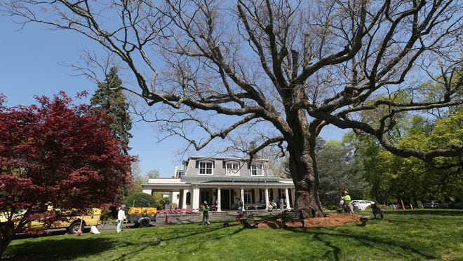 The Scarsdale Woman's Club hosted an Arbor Day celebration at its historic Rowsley Estate, April 28, 2017. Certified ISA arborist Mike McGowan of Bartlett Tree Experts talks about preserving Heritage trees like this nearly 500-year old white oak.