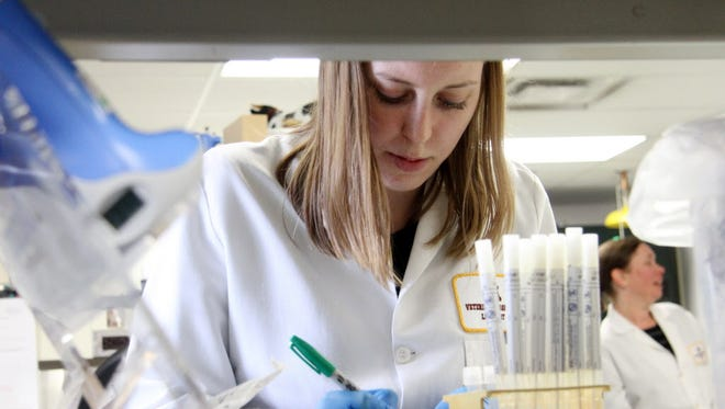 Amanda Falkstein, junior scientist, set up a few sample tubes at the University of Minnesotaís Veterinary Diagnostics Laboratory in St. Paul, Minn., on Wednesday, April 8, 2015, in the same process used to test for avian influenza.