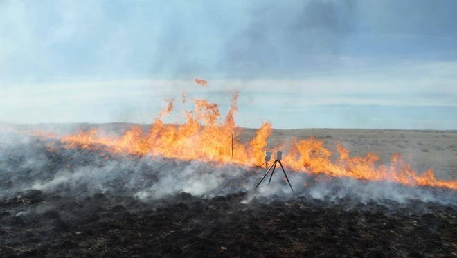 The Missoula Fire Sciences Laboratory placed temperature sensors to determine the maximum temperature of a fire set to clear vegetation from a cultural site in Phillips County.