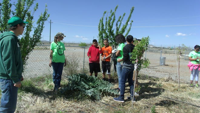Youth take part in tree planting at the Hidalgo County Youth Community Garden in Lordsburg, New Mexico. Hidalgo County Cooperative Extension recently received a grant from PNM Resources Foundation that will allow for more crops, soil and water conservation measures and beautification projects.