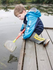 Aidan Irish, 3, Franklin fishes for water insects in
