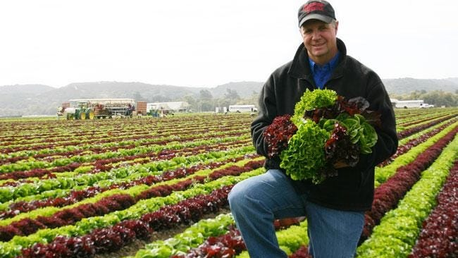 Mike Antle, a partner in the Salinas, Calif.-based Tanimura & Antle, cools and ships produce from Braga Fresh Family Farms in Yuma. Connections like these rely on strong transportation.