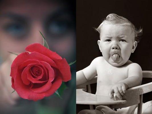 rosesraspberries