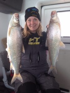 Lacy Kastern with a couple of huge whitefish out of Chequamegon Bay.