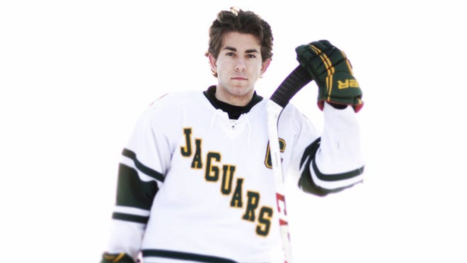 Ashwaubenon's Matt Berkovitz was the Press-Gazette Media's hockey player of the year for 2014.