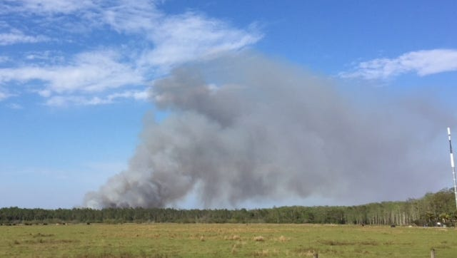 A thick column of smoke was being produced by a fire just east of Southwest Florida International Airport on Sunday.
