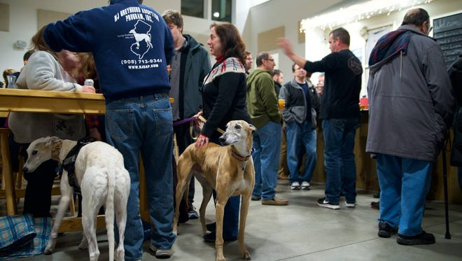 The New Jersey Greyhound Adoption Program (NJGAP) will host a greyhound Meet & Greet from 1 to 4 p.m. Saturday, Nov. 25.