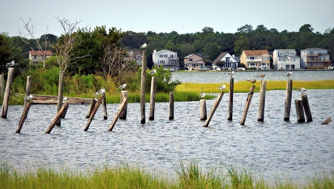 Ocean Pines has recently teamed up with the Maryland Coastal Bays Program in an effort to improve water quality.
