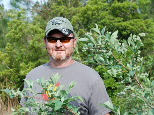 Scott Steele with his blueberries at Myrtle Creek Farm.