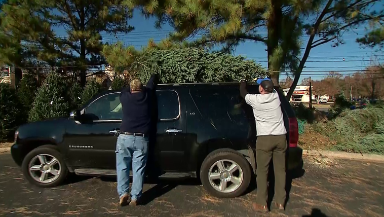 Christmas tree lot in Charlotte
