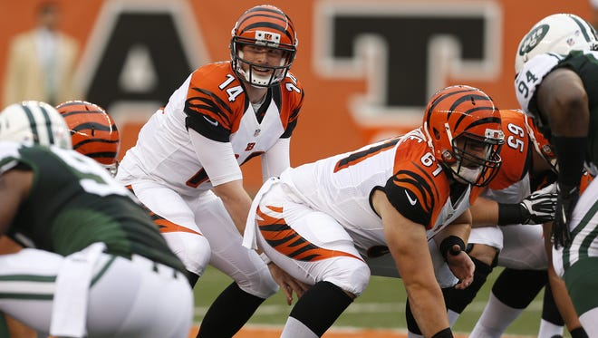 Cincinnati Bengals quarterback Andy Dalton (14) gets ready for the snap against the New York Jets at Paul Brown Stadium.