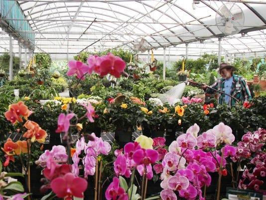 gardencenter01.jpg