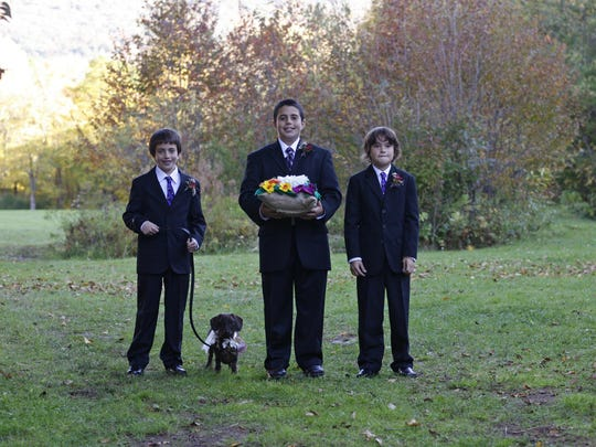 A dog walks with the ring bearers while taking part in a wedding ceremony at Full Moon Resort in Big Indian, N.Y. Dogs have become a regular part of wedding ceremonies, with many couples opting to send their pooch down the aisle along with them.