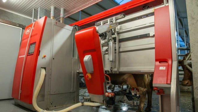 The Lely Astronaut A5 marks a new milestone in robotic milking.