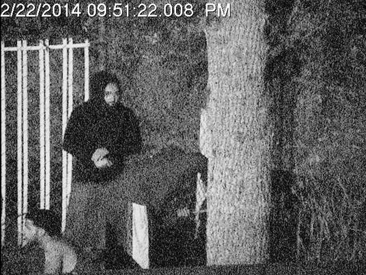 vlcsnap-2014-03-25-11h41m58s197