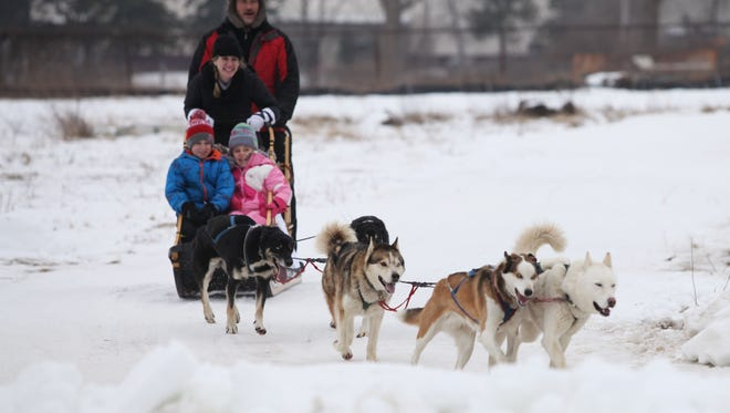 Sled dogs will join the fun this weekend at Rochester's Fire & Ice Festival.