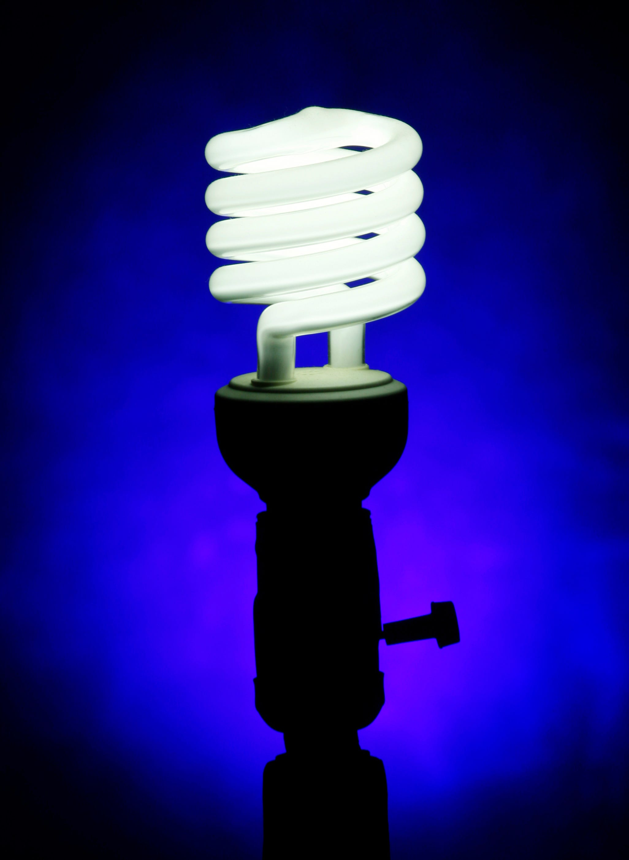 Lose the incandescent lights and unplug as many electronics as possible