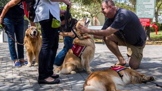"""Robert Calamia, 47, from Coral Springs, pets PAWS assistance dog Rocky at the Pine Trails Park memorials in Parkland on Monday, Feb. 26, 2018. The PAWS dogs are an """"absolutely fantastic idea,"""" Calamia said. """"It changed the entire atmosphere for the kids in school yesterday and brought such happiness."""""""