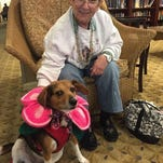 Costumed pets draw smiles at Spring Hills in Morristown