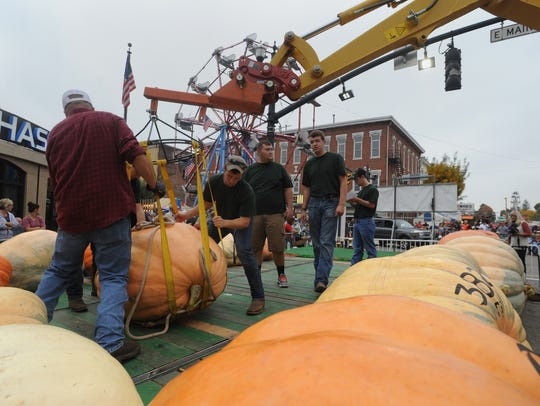 The official pumpkin pushers move giant pumpkins into