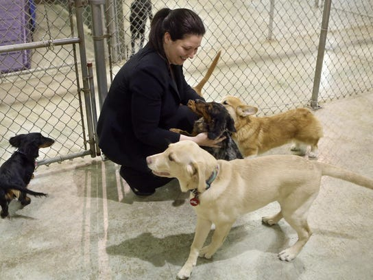 Dog Training Classes Newark De