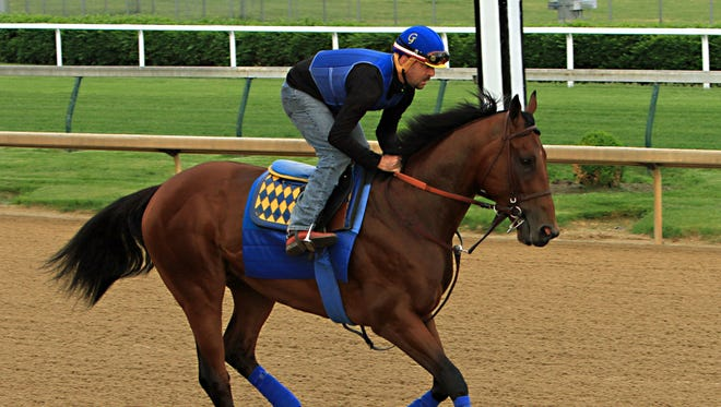 Kentucky Derby winner American Pharoah, ridden by regular exercise rider Jorge Alvarez, gallops at Churchill Downs in Louisville, Ky., Sunday, May 10, 2015. American Pharoah will run in the Preakness Stakes on May 16.