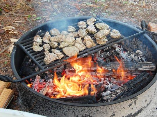 roasting oysters, Ken Fox_campfire grill
