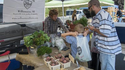 Shoppers at the Williamston Farmers Market buy fresh locally grown produce from Trillium Wood Farm in July 2015. The market is seeking funding through the city government the city Downtown Development Authority voted Tuesday not to fund the market's 2016 season.