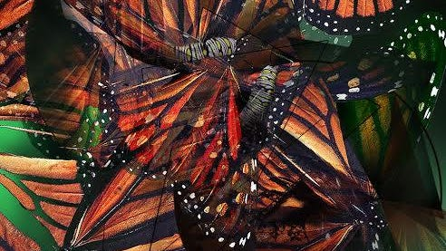 """Longtime Evangel art professor Stan Maples' digital print """"Metamorphosis"""" is part of the exhibit. Maples also printed the templates for the 1,000 monarch coloring pages that will fill the gallery."""