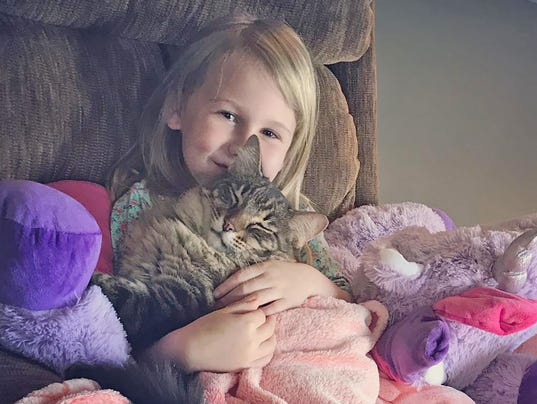 Cat Heals Heartbreak for a Little Girl