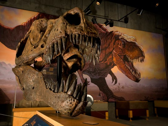 T.rex Discovery Centre